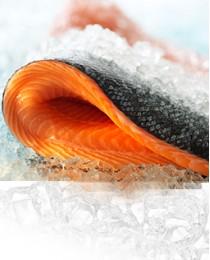Переработка рыбы и морепродуктов