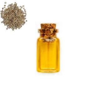 Экстракт Кориандра 5008 (жирорастворимый)
